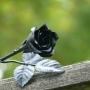 Kovácsoltvas Rózsa Széles - ajándékötlet